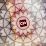 djinxi gadjadhar (company33game)'s profile photo