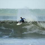 _DSC8783.thumb.jpg