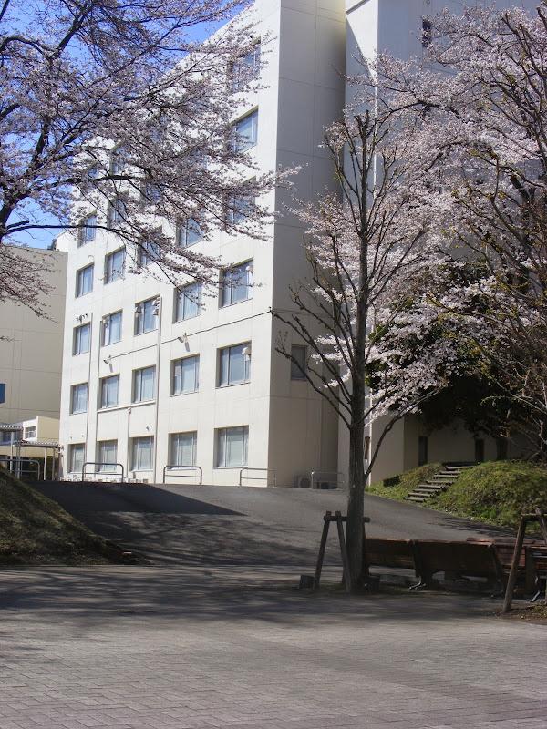 2014 Japan - Dag 2 - julia-DSCF1214.JPG