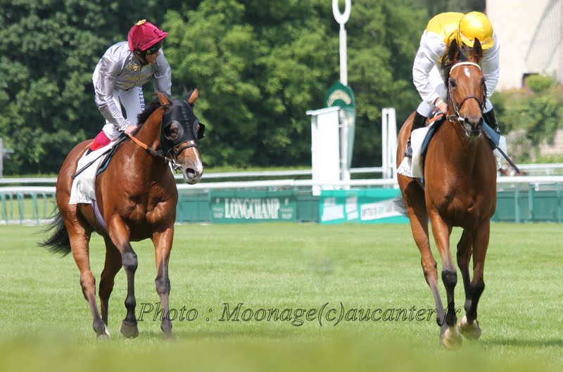 Photos Longchamp 25-05-2014 IMG_1334