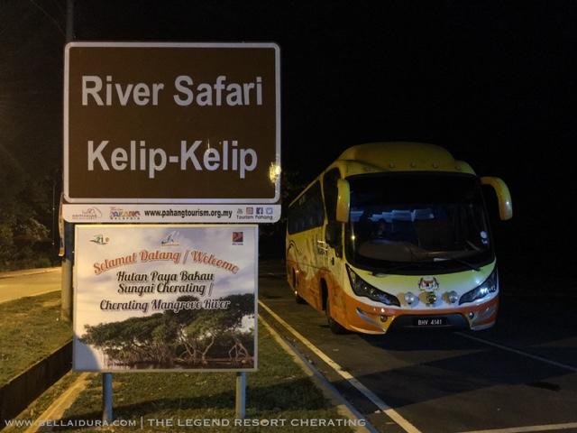 river safari, cherating, kelip-kelip, sungai cherating