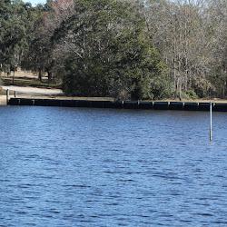 Fowl Marsh from Boat Feb3 2013 125