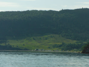 Photo: In Middle Arm, Goose Arm and Penguin Arm there are numerous outports that are being revivied.