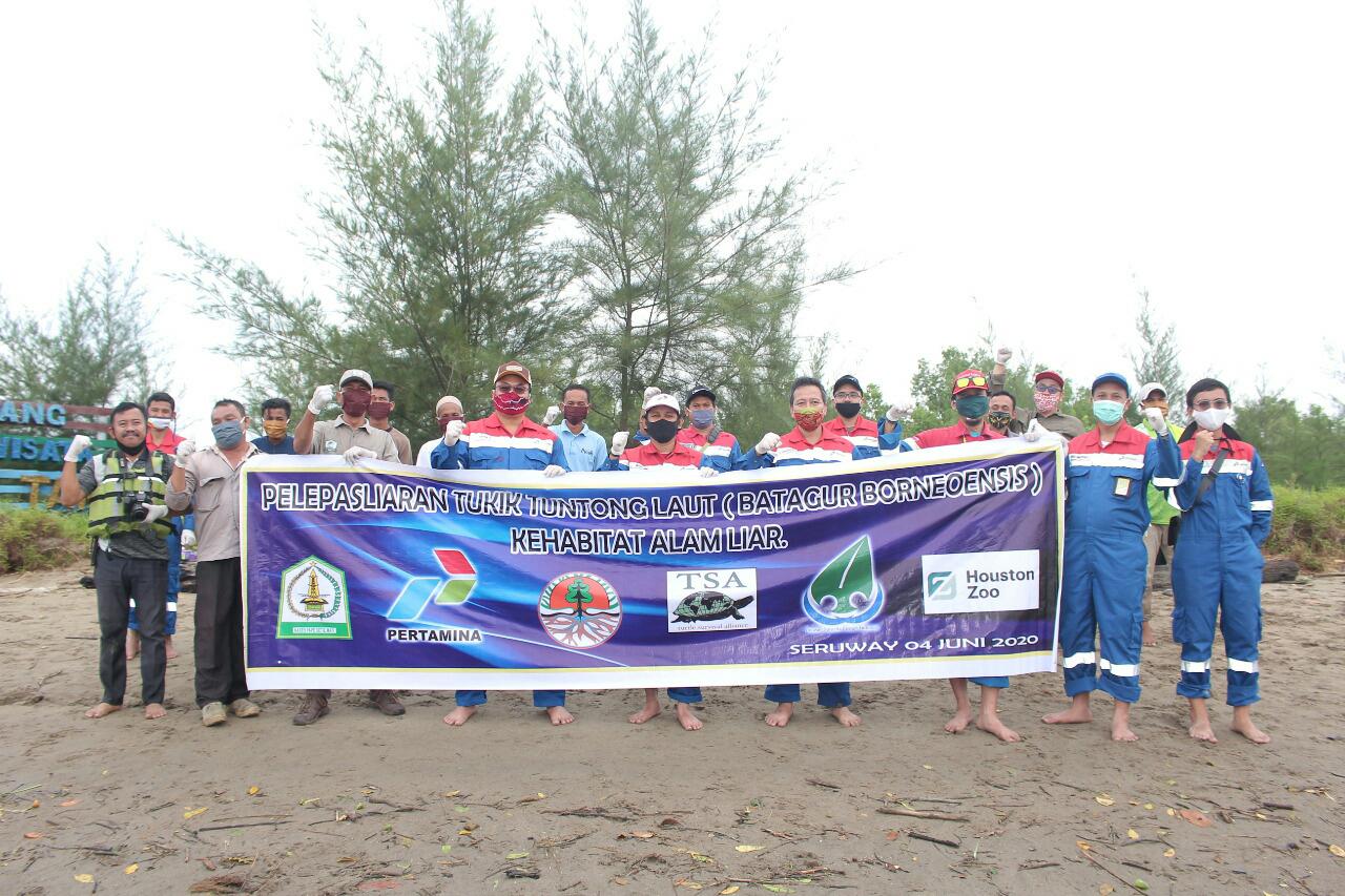 Konservasi Tuntong Laut Uapaya Lestarikan Dari Kepunahan Media Advokasi Tajam Dan Akurat Mengungkap Fakta
