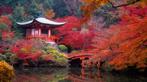 Daigo Temple in Autumn, Kyoto, Japan.jpg