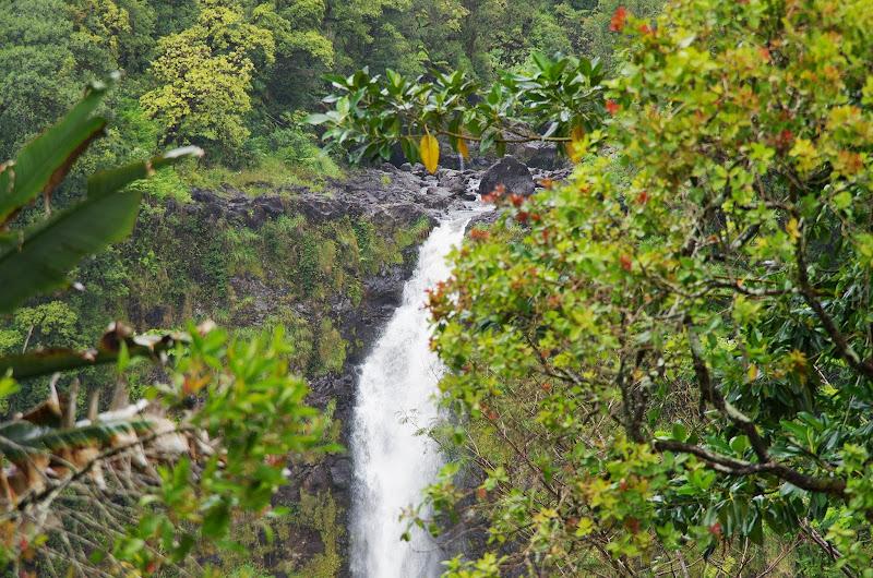 06-23-13 Big Island Waterfalls, Travel to Kauai - IMGP8861.JPG