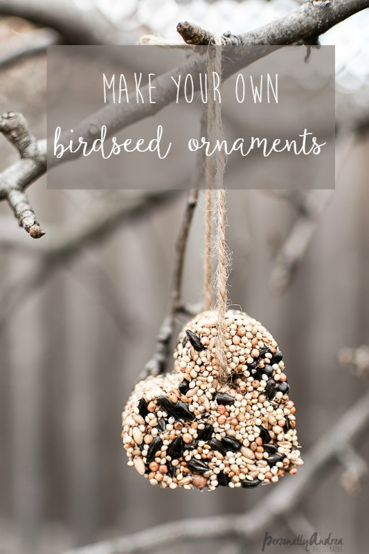 How to make birdseed ornaments | Pretty for gift-giving or attracting birds to your own backyard | personallyandrea.com