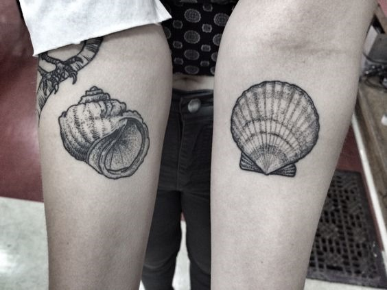 intrincados_dotwork_conchas_antebraço_tatuagens