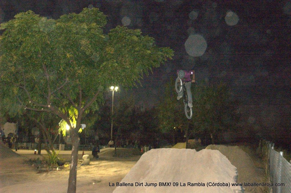 Ballena Dirt Jump BMX 2009 - BMX_09_0177.jpg