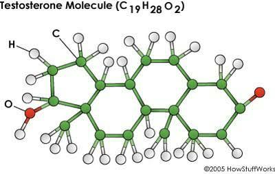6 Konsumsi Agar Hormon testosterone Tetap Terproduksi