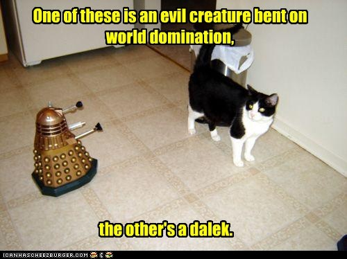 photo of a cat and a dalek