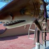 Downtown Aquarium - 116_4081.JPG