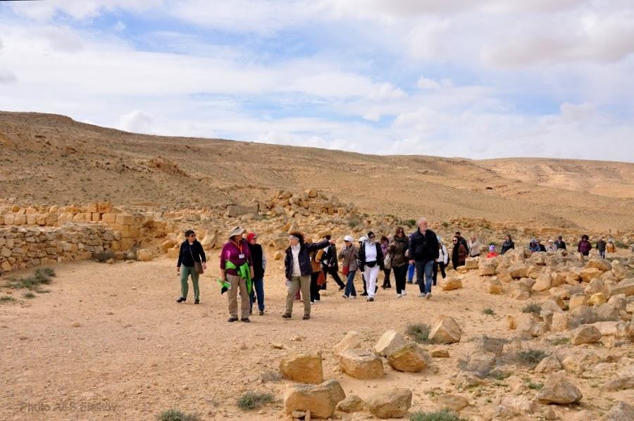 Мы идем вдоль руин города Мамшит. Экскурсия гида Светланы Фиалковой в Негев.