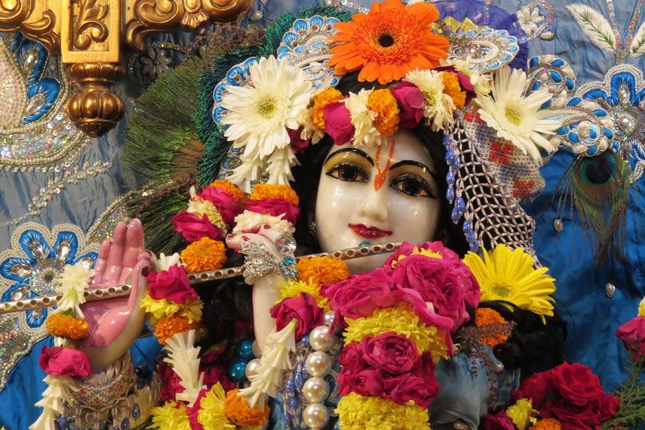 ISKCON Vallabh vidhyanagar Deity Darshan 18 jan 2017 (4)