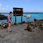 Natalia realizes sea lions don't understand english or spanish