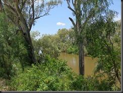 171105 031 Goondiwindi Macintyre River Walk