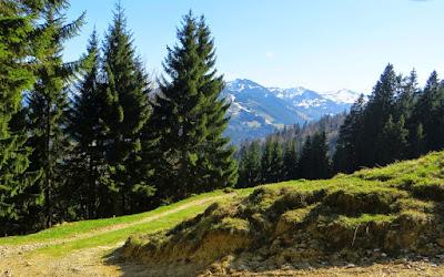 Aufstieg Alpe Oberberg Hörnergruppe Gunzesrieder Tal Allgäu