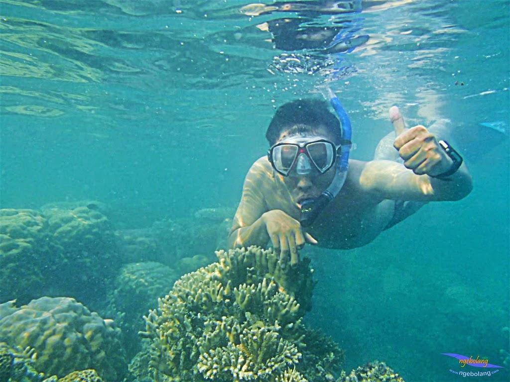 Pulau Harapan, 16-17 Mei 2015 Olympus  26