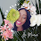Jei Monroe's profile photo