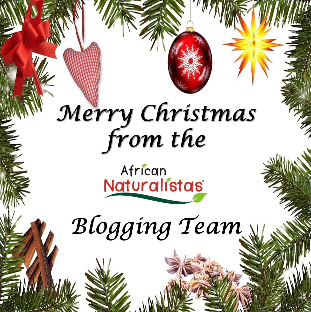 Second Day Of Christmas.African Naturalistas The 12 Days Of Christmas For Natural Hair