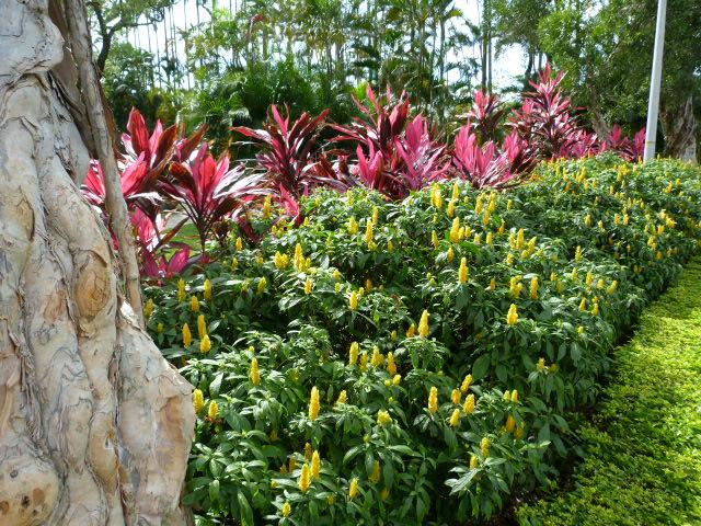 TAIWAN.TAIPEI, shilin une des villas de CKS dans un ancien parc botanique et autres vues - 1sichuan%2B017.JPG