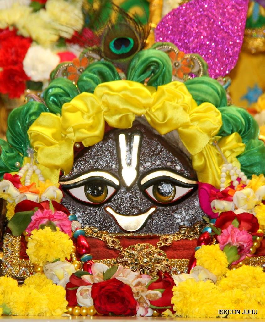 ISKCON Juhu Sringar Deity Darshan on 26th June 2016 (13)