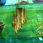 Археологический музей ВГПУ 029.jpg
