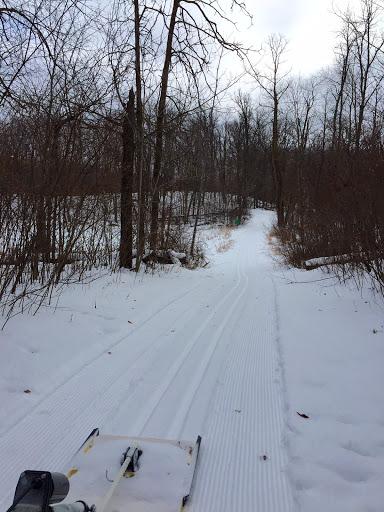 Fresh track on Island Lake trail