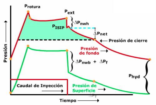[Figura-24]