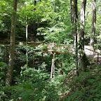 Sehr idyllisch die Holzbrücke über den Fuchslochbach