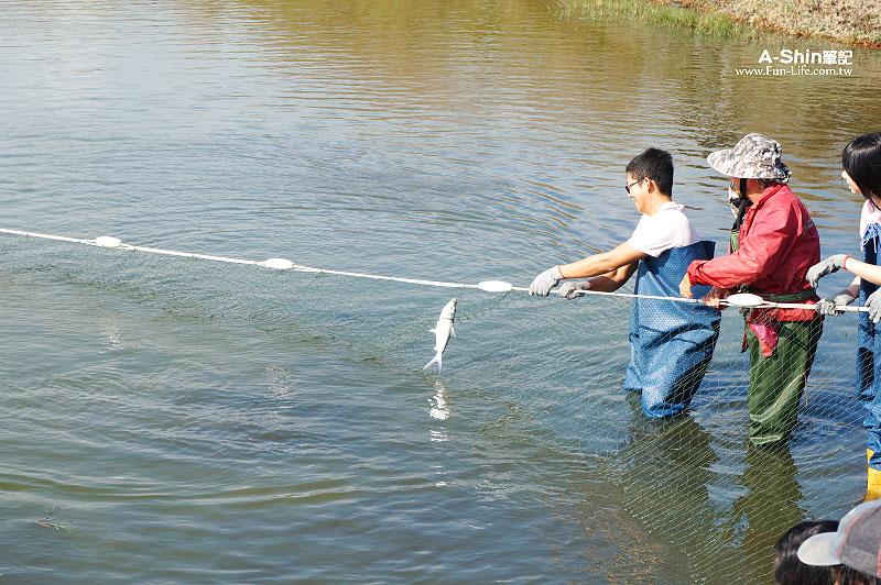 台南漁塭體驗