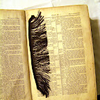 Fringe found in Bible