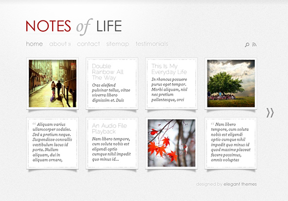 DailyNotes WordPress Tumblr Theme