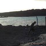 Hawaii Day 6 - 114_1809.JPG