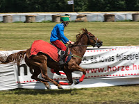 Egri Árpád - Somorja lovasa.jpg