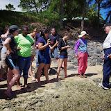 06-26-13 National Tropical Botantial Gardens - IMGP9527.JPG