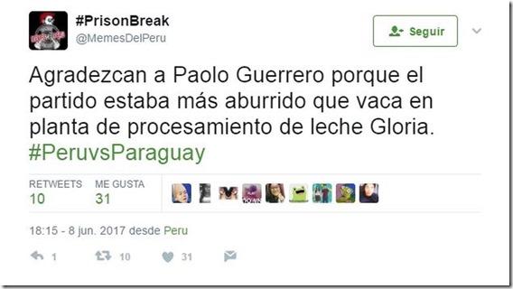 meme peru vs paraguay  (3)