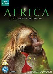 Africa - Châu phi