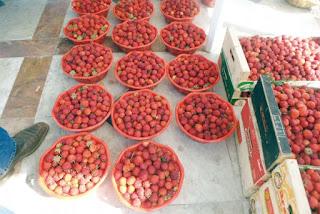 La manifestation a lieu chaque année Skikda fête sa fraise