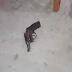 Homem tenta assaltar loja de conveniência e acaba morto em Campina Grande