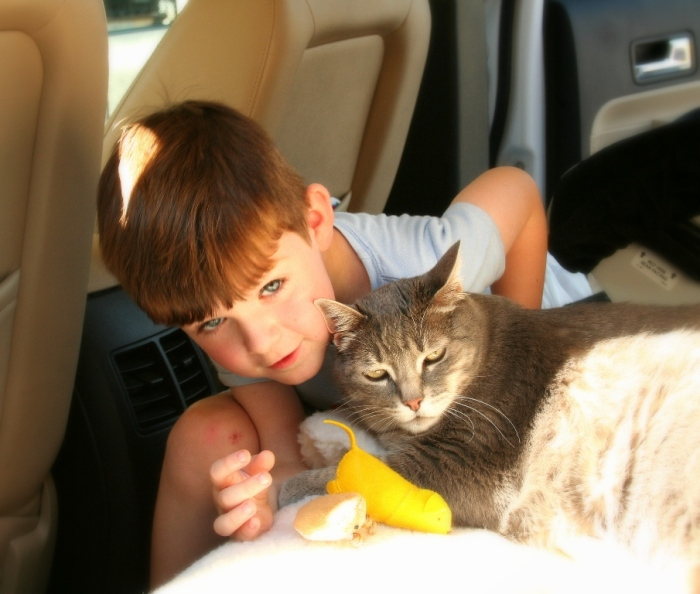 adorable 5-year old boy with brown hair and blue eyes, sitting on floor of car with his head hunkered down near velveeta, who is laying on the seat of the car with a few toys in front of her