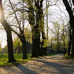 2015.04.23.,Klasztor wiosną,fot.H.L (30).jpg