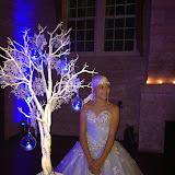 141206SM Stephanie Morales Quince Celebration A winter Wonderland Theme