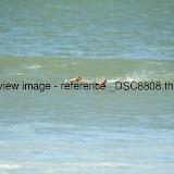 _DSC8808.thumb.jpg