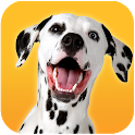 Dalmatian Dog Simulator icon