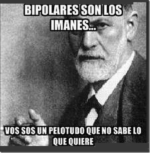 bipolar 1