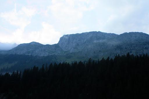 ABK 2008