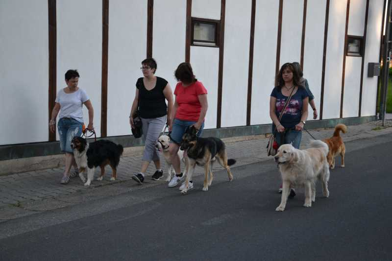 7. Juni 2016: On Tour in Neustadt a.d. Waldnaab - DSC_0525.JPG