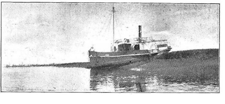Vapor PUERTO DE SANTA MARIA embarrancado en Boca Chica. La Unión Ilustrada. Año XI. N 489. 23 de enero de 1919.png