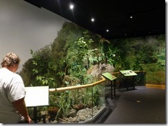 Riparian display